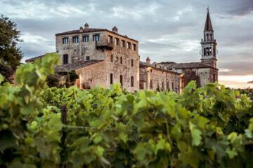 Masciarelli Winery